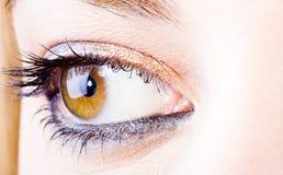 Oeil de fille Image libre de droits