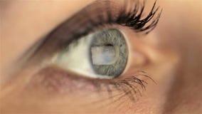 Oeil de fille de femme macro regardant le moniteur, recherchant clips vidéos
