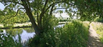 Oeil de fleuve image stock