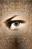 Oeil de natures images libres de droits