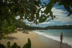 Oeil de plage Image libre de droits