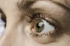 Oeil de plan rapproché et iris de jeune femme Photographie stock libre de droits