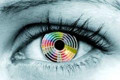 Oeil de roue de couleur Image libre de droits