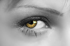 Oeil de Womans Photographie stock libre de droits