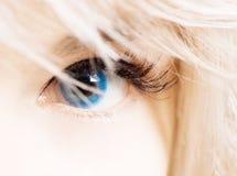 Oeil de Womans dans les contacts bleus Photographie stock libre de droits