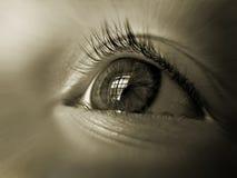 Oeil du plan rapproché d'enfant, avec la réflexion de la fenêtre dans elle photos stock