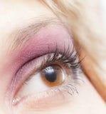 Oeil femelle Image stock