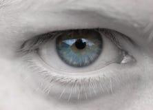 Oeil femelle Images libres de droits