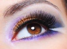 Oeil femelle avec le renivellement saturé par mode images libres de droits