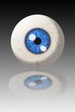 Oeil humain Photo libre de droits
