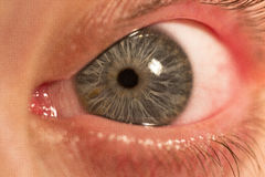 Oeil humain Photo stock