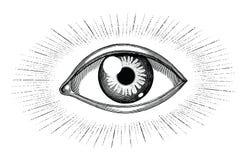Oeil humain avec la gravure de cru d'aspiration de main de tatouage de rayons d'isolement sur le fond blanc illustration stock
