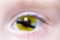 Oeil humain avec le drapeau national du Brunei photographie stock libre de droits