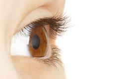 Oeil humain. macro tir photo stock