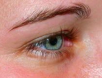 Oeil humain vert Photo libre de droits