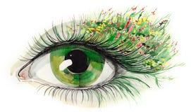 Oeil humain vert Photographie stock libre de droits
