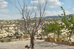 Oeil mauvais dans l'arbre derrière la vallée d'amour en parc national de Goreme Cappadocia Image libre de droits
