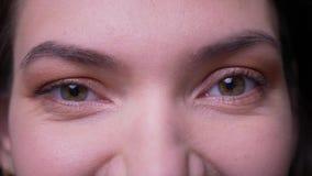 Oeil-portrait en gros plan de la femme d'affaires calme de brune observant dans la caméra montrant l'amitié au fond noir clips vidéos