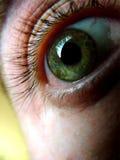 Oeil vert Images libres de droits