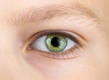 Oeil vert d'enfant Photographie stock libre de droits