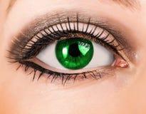 Oeil vert de belle femme avec de longues mèches Photographie stock libre de droits