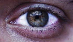 Oeil vert de l'homme Images libres de droits
