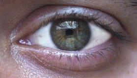 Oeil vert de l'homme Image libre de droits