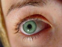 Oeil vert de plan rapproché photo stock