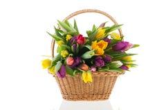 Oeillet coloré de bouquet Photo stock