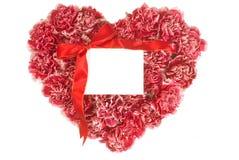 Oeillet dans la forme d'amour Image libre de droits