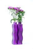 Oeillet violet dans une bouteille pourpre carrée Image libre de droits