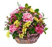 Oeillets roses dans un panier en osier Photos libres de droits
