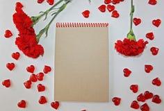 Oeillets rouges sur un fond blanc Photographie stock libre de droits