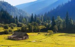 Oekraïens dorp Stock Afbeeldingen