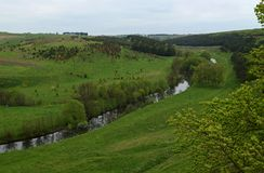 Oekraïens landschap in de lente Gebieden met groen gras op de banken van de Rivierhorizon die worden behandeld stock foto's
