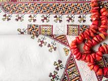 Oekraïens nationaal borduurwerk en rode halsband stock foto