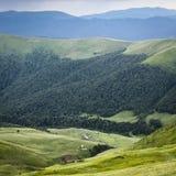 Oekraïense bergen Stock Afbeeldingen