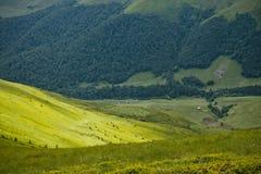Oekraïense bergen Stock Foto's