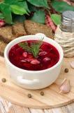 Oekraïense en Russische nationale rode borsjt met kruiden Stock Afbeeldingen