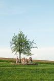 Oekraïense houten bijenkorven op een gebied onder een boom Royalty-vrije Stock Foto