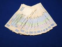Oekraïense Hryvnia Stock Foto