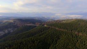 Oekraïense Karpatische bergen Vlucht om Hoverla op te zetten stock footage