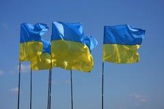 Oekraïense vlaggen Stock Foto's