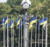 Oekraïense vlaggen voor het stadion kiev Royalty-vrije Stock Afbeeldingen