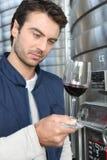 Oenologist, der einen Wein analysiert Stockfotos