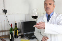 Oenologist examining glass of wine Stock Photos