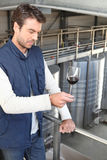Oenologist with a glasswine Stock Image
