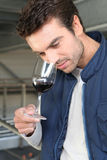 Oenologist sampling glass of red Royalty Free Stock Images