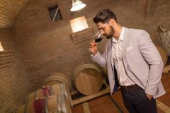 Oenologist tasting wines in cellar royalty free stock photos