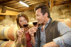 Oenologists goûtant la nouvelle production vinicole dans la cave images libres de droits